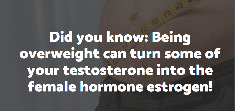 best supplements to increase testosterone