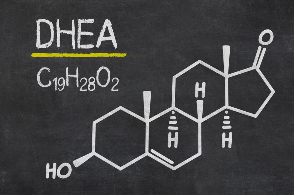 Does DHEA Increase Testosterone – Everything You Need To Know