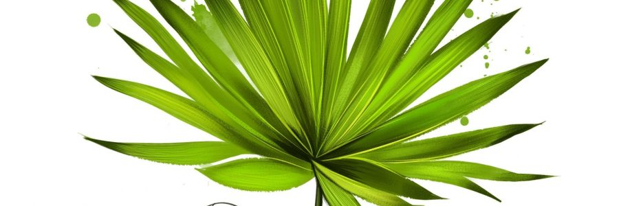 does-saw-palmetto-increase-testosterone
